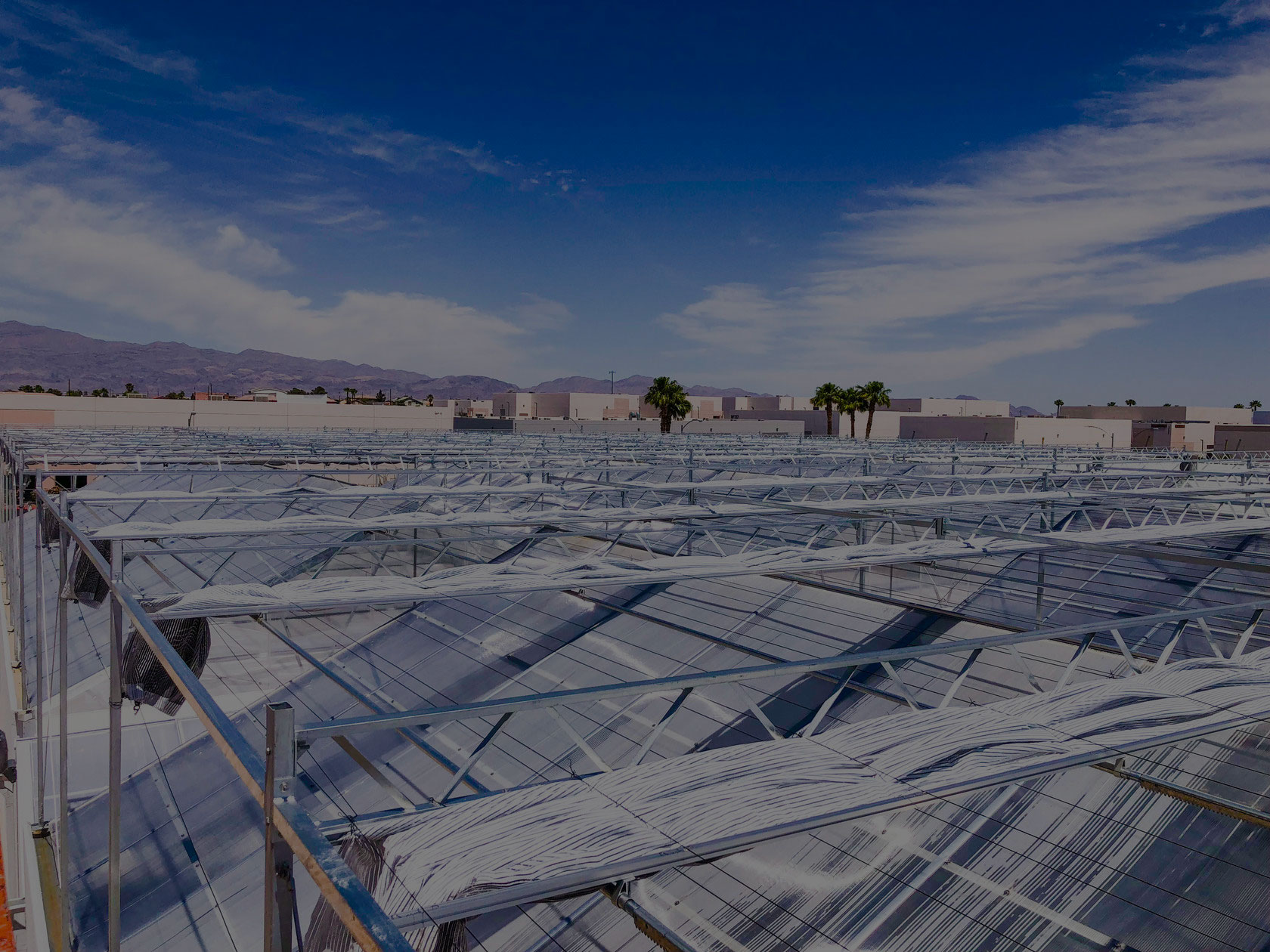 Explaining the Benefits of Greenhouse Cannabis Cultivation