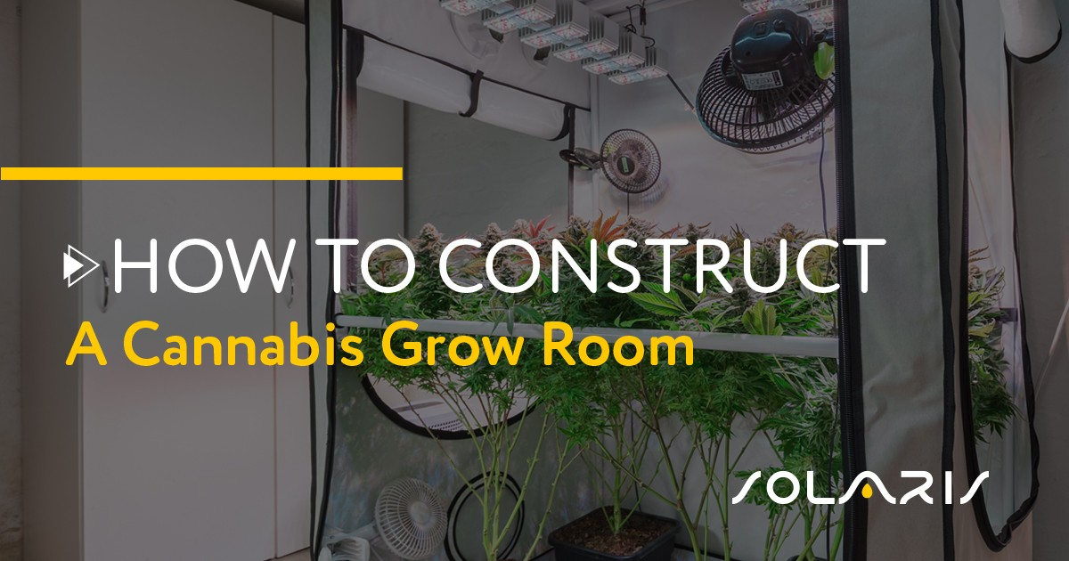 How to Construct a Cannabis Grow Room