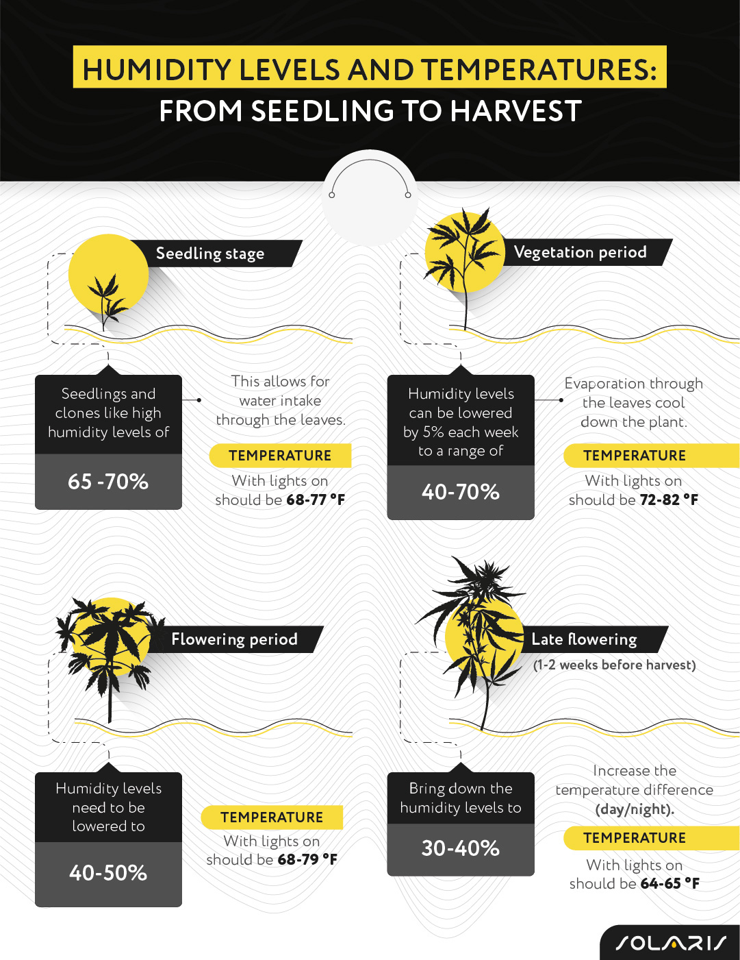 Humidity levels and temperatures: from seedling to harvest